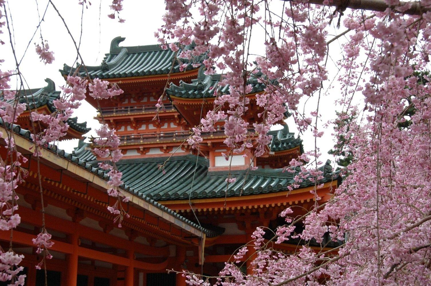 花見シーズン到来!京都の桜名所