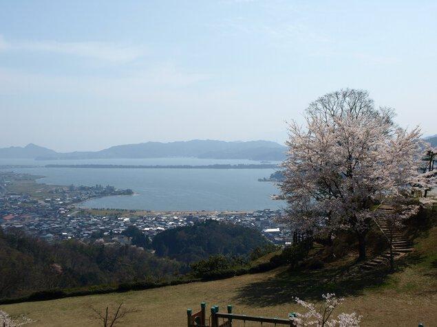 大内峠一字観公園の桜