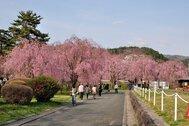 米内浄水場