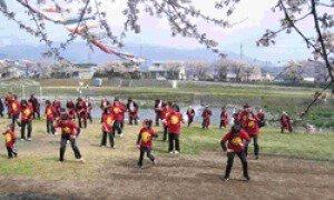 相川河川敷 桜まつり