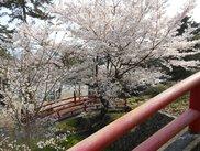 県立琴弾公園