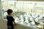【工場見学一時休止】お菓子と食の桔梗信玄餅工場テーマパーク