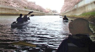 目黒川お花見カヤック クルーズ・早起きツアー 桜の特別開催