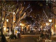 熊本市中心市街地一帯