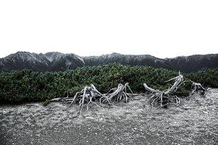 写真集出版記念展 髙﨑 紗弥香 『沈黙の海へ』