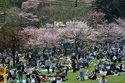 子野日公園