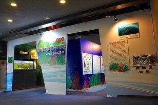 企画展 「豊かな里海・藻場の世界」