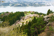 気仙沼大島・亀山
