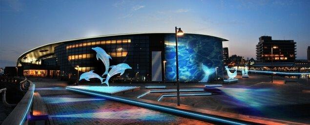 灯りのまち イルミネーション水族館