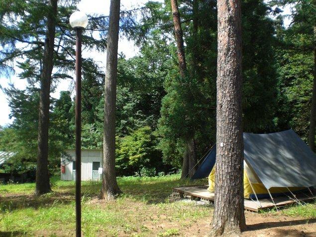 グリーンキャンプなかだ