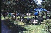 境港公共マリーナキャンプ場
