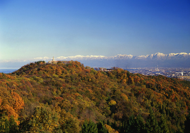 二上山の紅葉