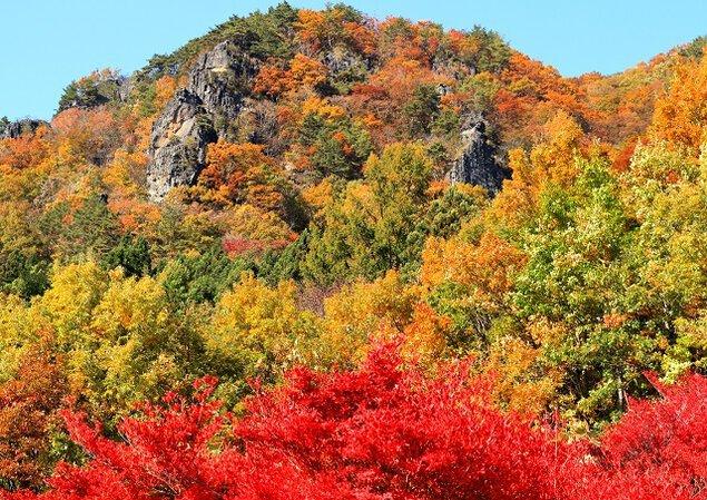 霊山県立自然公園の紅葉