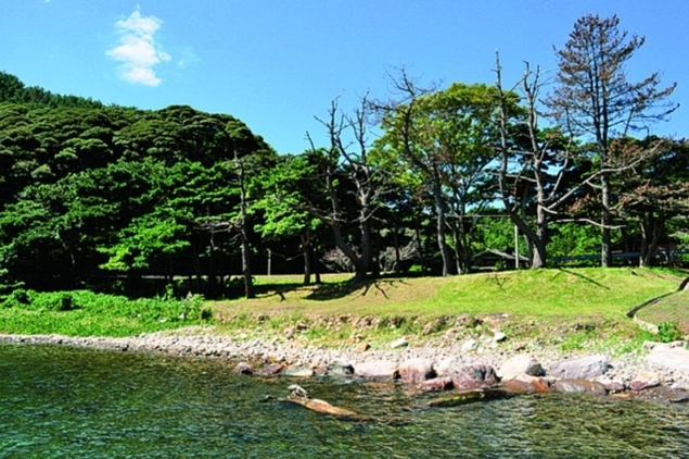 立木キャンプ場