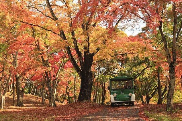 軽井沢プリンスホテルの紅葉