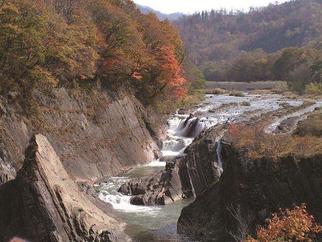 滝の上公園の紅葉