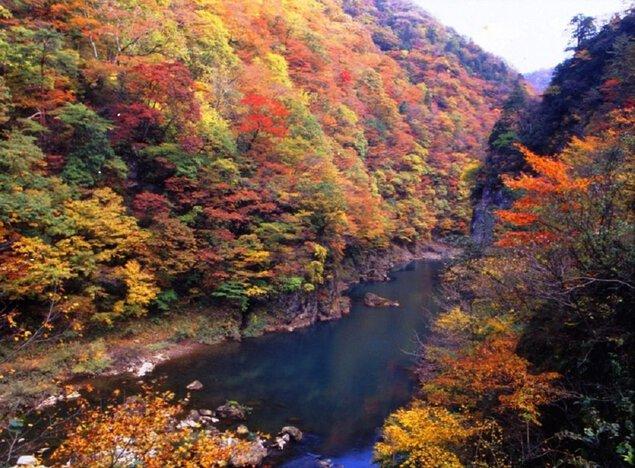抱返り渓谷の紅葉