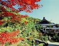 大原山・西福寺