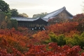 大本山 東福寺