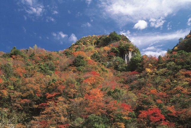 香落渓の紅葉