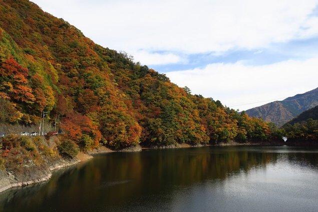 奥多摩(奥多摩湖畔)の紅葉