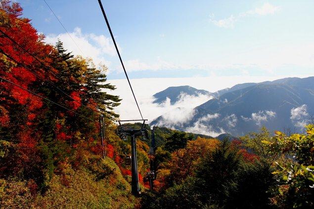 【紅葉・見頃】富士見台高原