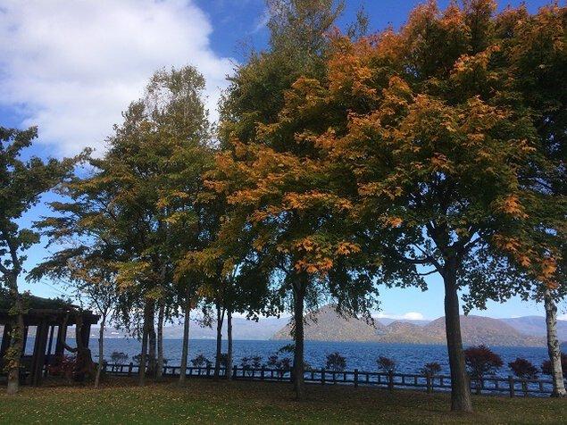 洞爺湖周辺の紅葉