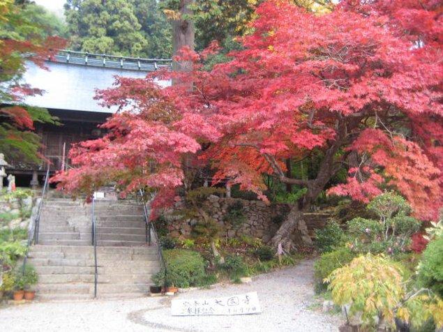 安泰山 大國寺の紅葉