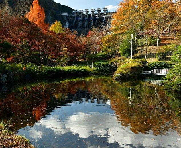 丹沢湖・箒沢の紅葉
