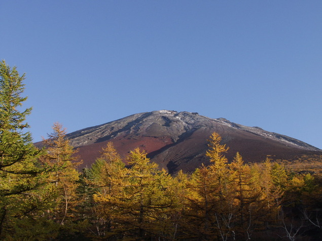 富士山5合目(山梨側)の紅葉