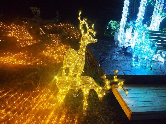 星空のイルミネーション2018~星降る村の灯りと光~