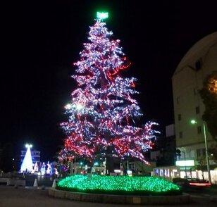 坂出駅前市民広場、ハナミズキ広場