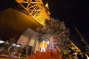東京タワー ウィンターファンタジー~オレンジ・イルミネーション~