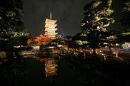 備中国分寺五重塔のライトアップ