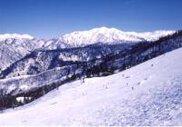 立山山麓(極楽坂・らいちょうバレー)スキー場