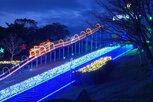田平公園 光のフェスタ2019