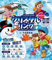 クリスタルリンク 氷じゃないスケートリンク in 中京競馬場
