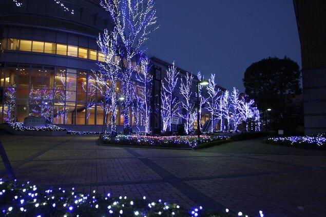 徳島文理大学イルミネーション 文理ナリエ(徳島キャンパス)
