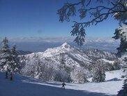 志賀高原 横手山・渋峠スキー場