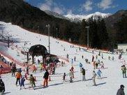 中央アルプス駒ヶ根高原スキー場 オープン