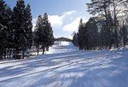 ウィンターリゾート郡上 郡上ヴァカンス村スキー場 オープン