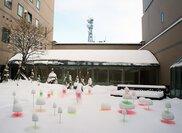 Snow Pallet 10