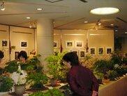半田山植物園 早春の山草展