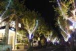 北野クリスマスストリート2019