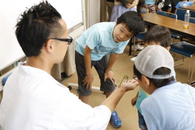 昆虫教室 第5回「なぜ昆虫は変態するか」