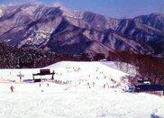 三ノ倉スキー場 オープン