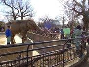 姫路市立動物園 動物たちに節分のプレゼント!