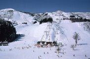 上越国際スキー場 オープン