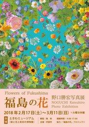 「福島の花」 野口勝宏写真展