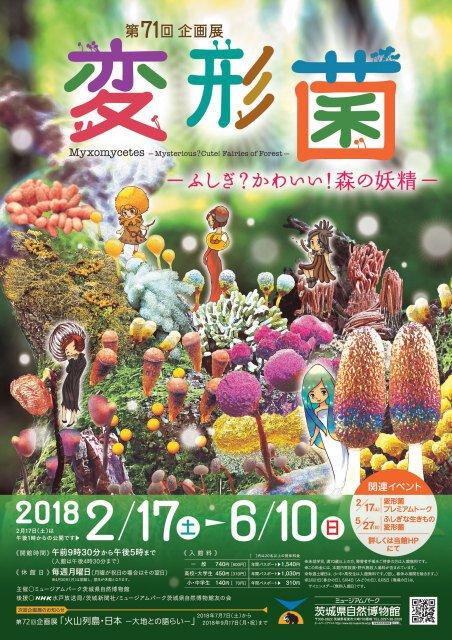 第71回企画展「変形菌-ふしぎ?かわいい!森の妖精-」